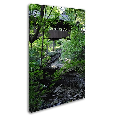 "Trademark Monica Fleet ""Latent Bridge"" Gallery-Wrapped Canvas Art, 12"" x 19"""