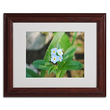 Trademark Monica Fleet White Matte W/Wood Frame