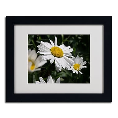 Trademark Monica Fleet White Matte W/Black Frame