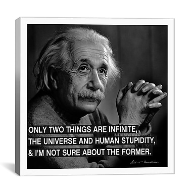 iCanvas Albert Einstein Quote Photographic Print on Canvas; 18'' H x 18'' W x 0.75'' D