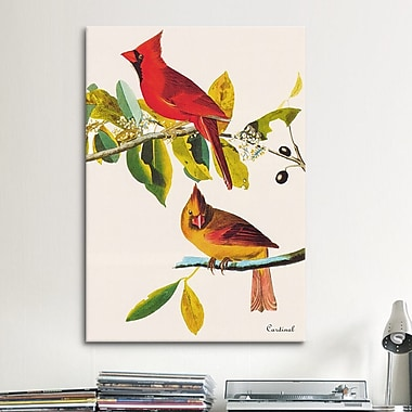 iCanvas 'Cardinal' by John James Audubon Graphic Art on Canvas; 26'' H x 18'' W x 0.75'' D