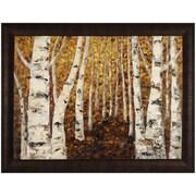 Hobbitholeco. Birch Tree Path by Tina O. Framed Painting