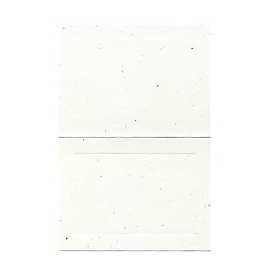 JAM Paper® Blank Foldover Cards, A6 size, 4 5/8 x 6 1/4, Fiesta Panel, 25/pack (309924C)