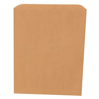 JAM Paper® Merchandise Bags, Medium, 8.5 x 11, Brown Kraft Recycled, 1000/carton (342126844)