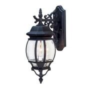 TransGlobe Lighting 1-Light Outdoor Wall Lantern; White