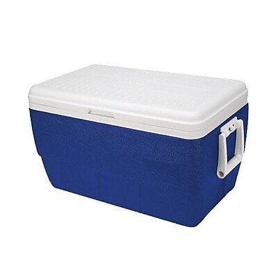 Igloo® 48 qt. Ice Chest With Lid, Blue/White