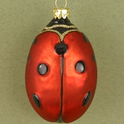 Cobane Studio LLC Ladybug Ornament