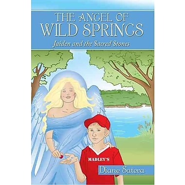 The Angel of Wild Springs: Jaiden and the Sacred Stones