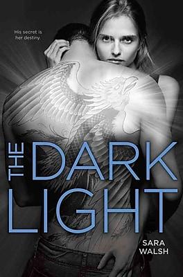 The Dark Light (HC)