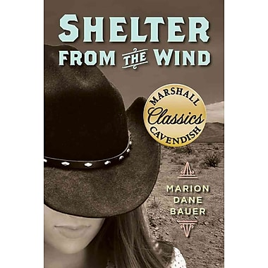 Shelter from the Wind