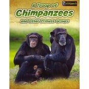 A Troop of Chimpanzees: and Other Primate Groups (Animals in Groups)