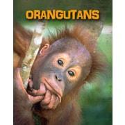Orangutans (Living in the Wild: Primates)