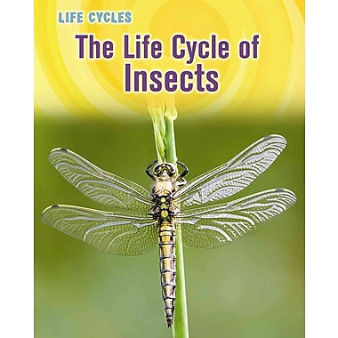 The Life Cycle of Insects (Life Cycles)