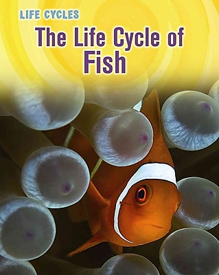 The Life Cycle of Fish (Life Cycles)
