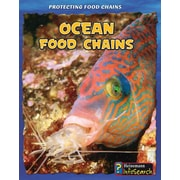 Ocean Food Chains (Protecting Food Chains)