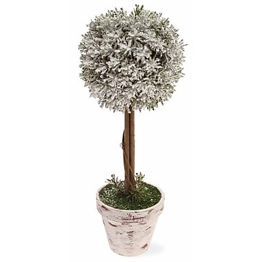 October Hill Home Accent 14'' Ball Topiary in Pot