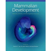 Mammalian Development: Networks, Switches, and Morphogenetic Processes