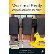 The Work-Family Interface: An Introduction (Contemporary Family Perspectives (CFP))