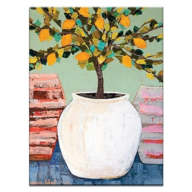 Artist Lane Lemon Tree in Pot by Anna Blatman Framed Painting Print on Wrapped Canvas