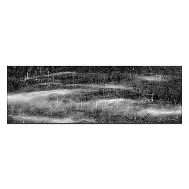 Artist Lane Mesmerising by Andrew Brown Photographic Print on Canvas in Black