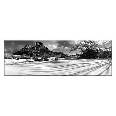 Artist Lane Pristine by Andrew Brown Photographic Print on Canvas in Black