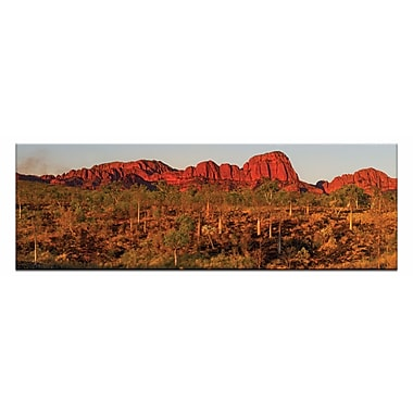 Artist Lane Afterburn by Andrew by Andrew Brown Framed Photographic Print on Wrapped Canvas
