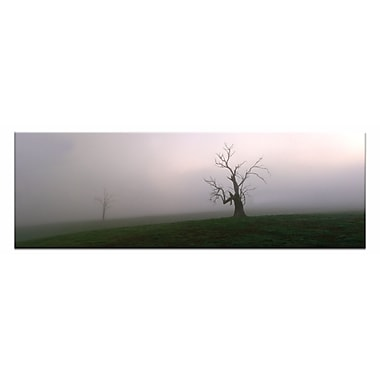 Artist Lane Out of the Mist by Andrew Brown Framed Photographic Print on Wrapped Canvas