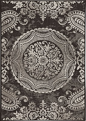 Balta Rugs 30413690.160225 5'x8' Indoor/Outdoor Rug, Black