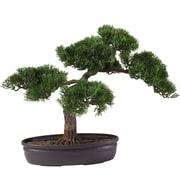 "Nearly Natural 16"" Cedar Bonsai Plant in Pot (4106)"
