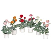 Nearly Natural 4601 Ranunculus Set of 6, Assorted