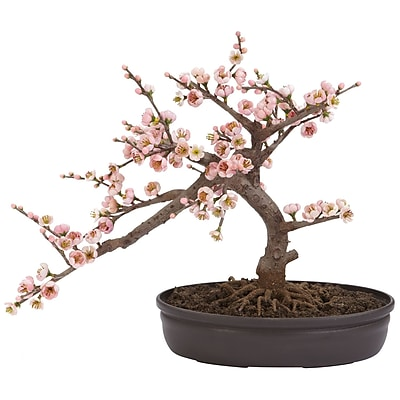 Nearly Natural 4764 Cherry Blossom Bonsai Tree in Pot