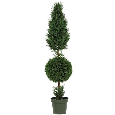 Nearly Natural 5168 Cypress Ball Cone Plant in Pot