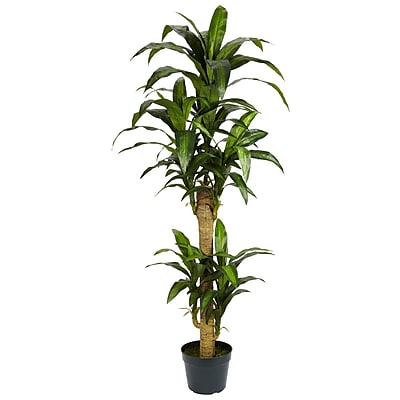 Nearly Natural 6100 5' Yucca Silk Plant in Pot