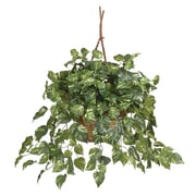 Nearly Natural 6517 Pothos Hanging Plant in Basket