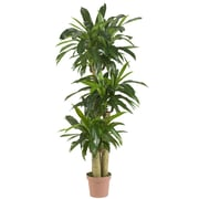 Nearly Natural 6584 Corn Stalk Dranaena Plant in Pot