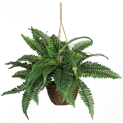 Nearly Natural 6599 Boston Fern Hanging Plant in Basket