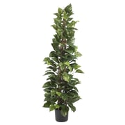 """Nearly Natural 6613 63"""" Pothos Climbing Plant in Pot"""