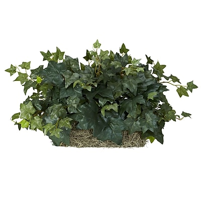 Nearly Natural 6707 Ivy Ledge Desk Top Plant
