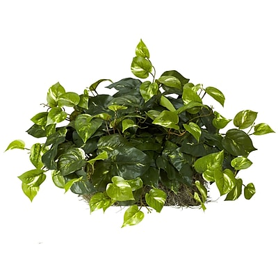 Nearly Natural 6708 Pothos Ledge Plant