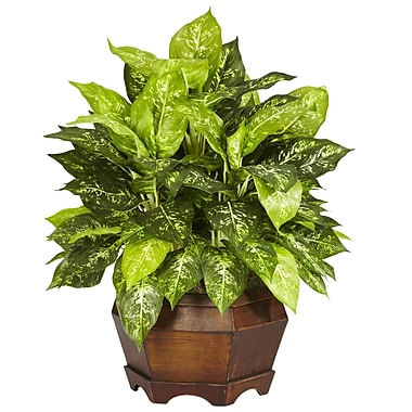 Nearly Natural 6709 Variegated Dieffenbachia Plant in Pot