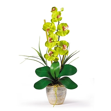 Nearly Natural 1016-GR Phalaenopsis Floral Arrangements, Green