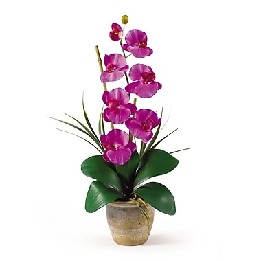 Nearly Natural 1016-OR Phalaenopsis Floral Arrangements, Orchid