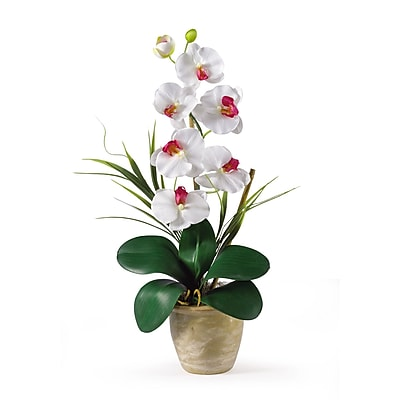 Nearly Natural 1016-WH Phalaenopsis Floral Arrangements, White
