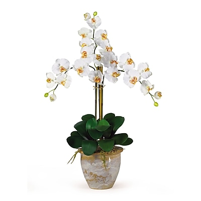 Nearly Natural 1017-CR Triple Phalaenopsis Floral Arrangements, Cream