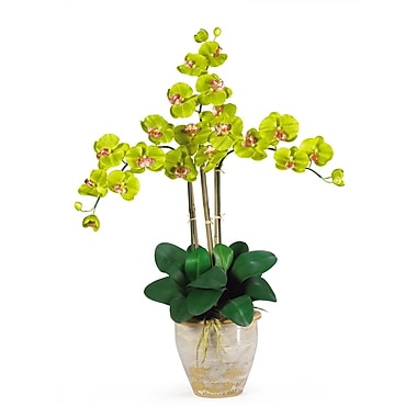 Nearly Natural 1017-GR Triple Phalaenopsis Floral Arrangements, Green