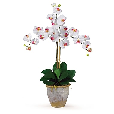 Nearly Natural 1017-WH Triple Phalaenopsis Floral Arrangements, White