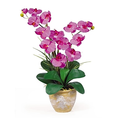 Nearly Natural 1026-OR Double Phalaenopsis Floral Arrangements, Orchid