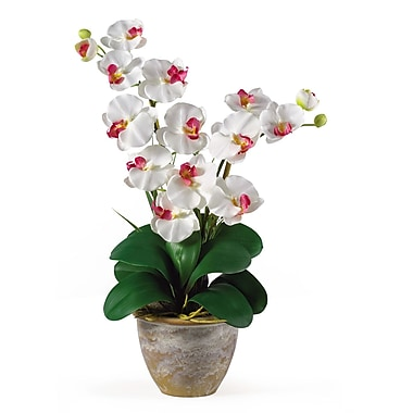 Nearly Natural 1026-WH Double Phalaenopsis Floral Arrangements, White