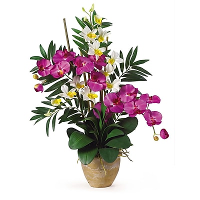 Nearly Natural 1071-OC Phal Dendrobium Floral Arrangements, Orchid cream