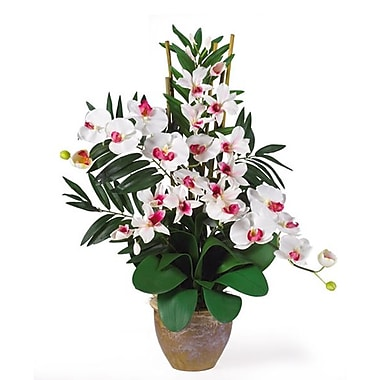 Nearly Natural 1071-WW Phal Dendrobium Floral Arrangements, White
